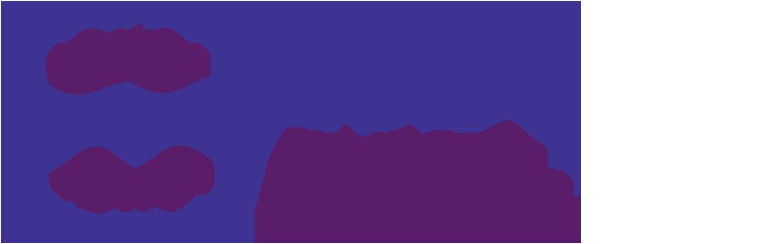 Agence spécialisée Chili